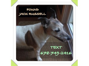<a href='/pet-recovery/FoundPetPoster.aspx?sighting=19311' style='color:white; text-decoration:none;'>Jack Russell (Dog)<br/>Cumming, GA</a>