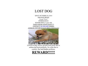 <a href='/pet-recovery/LostPetPosterOnline.aspx?lpid=38492' style='color:white; text-decoration:none;'>Coyote (Pomeranian)<br/>Houston, TX</a>