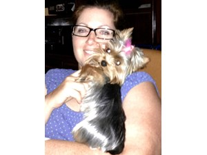 <a href='/pet-recovery/LostPetPosterOnline.aspx?lpid=39155' style='color:white; text-decoration:none;'>Bella (Yorkshire Terrier)<br/>Spring, TX</a>
