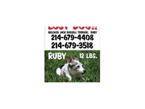 <a href='/pet-recovery/LostPetPosterOnline.aspx?lpid=39242' style='color:white; text-decoration:none;'>Ruby (Jack Russell)<br/>Dallas, TX</a>