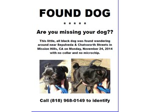 <a href='/pet-recovery/FoundPetPoster.aspx?sighting=20023' style='color:white; text-decoration:none;'>Pug (Dog)<br/>Mission Hills, CA</a>